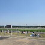 京都競馬場の子ども向け遊具がすごい!200円で思いっきり遊べます