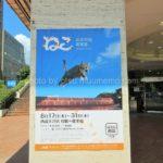 西武大津店でねこ写真展開催中。岩合さんのトークショーもありました
