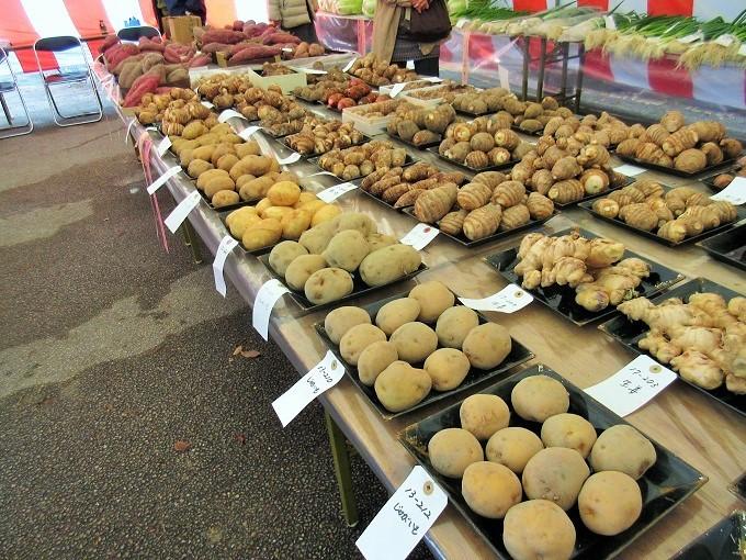 農産物品評会の芋