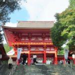 子どもと一緒に近江神宮でどんぐり拾いしてきました