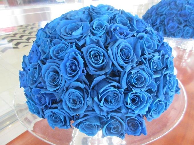 琵琶湖ホテルの青いバラ