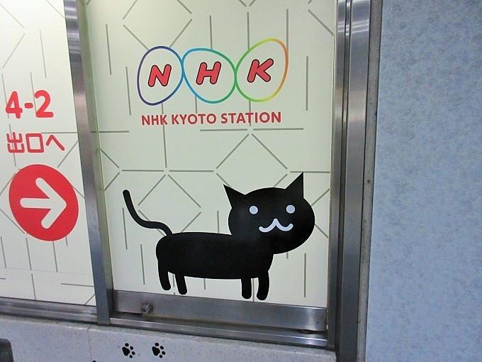 NHK京都のねこまる